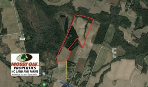 UNDER CONTRACT!  69 Acres of Residential Timber and Farm Land for Sale in Columbus County NC!