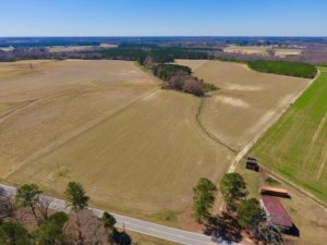 UNDER CONTRACT!  56.69 Acres of Farm and Timber Land For Sale in Wilson County NC!