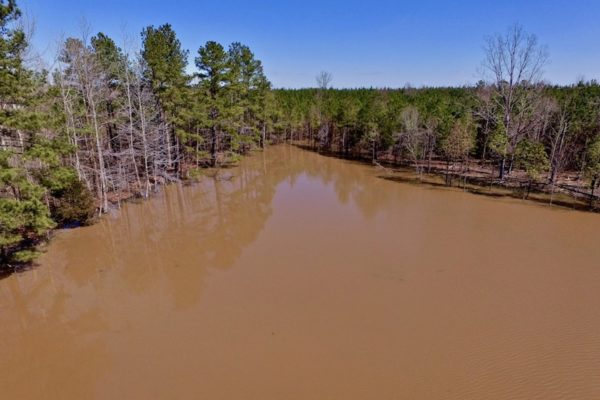 280 Acres of Developable Farm and Timber Land For Sale in Granville County NC!