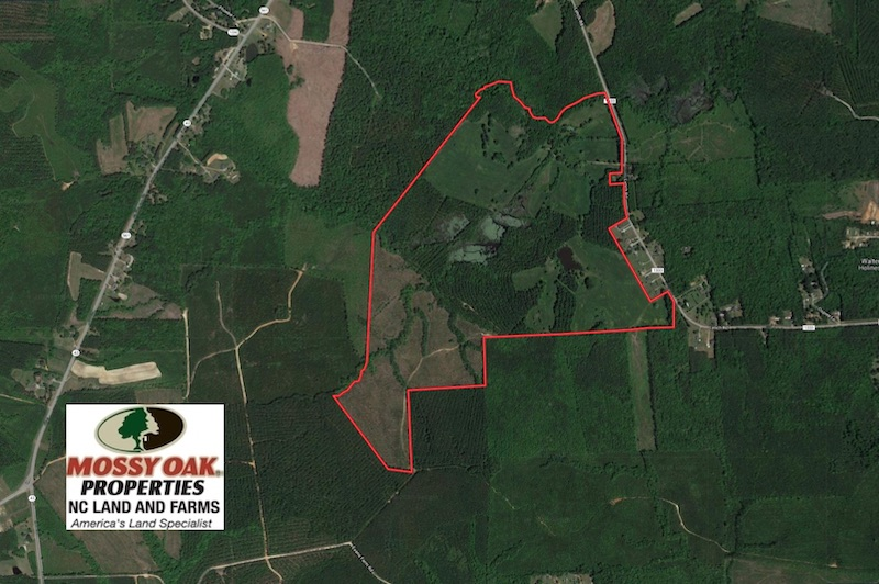 UNDER CONTRACT!  270.86 Acres of Pasture and Timber Land with Pond For Sale in Halifax County NC!
