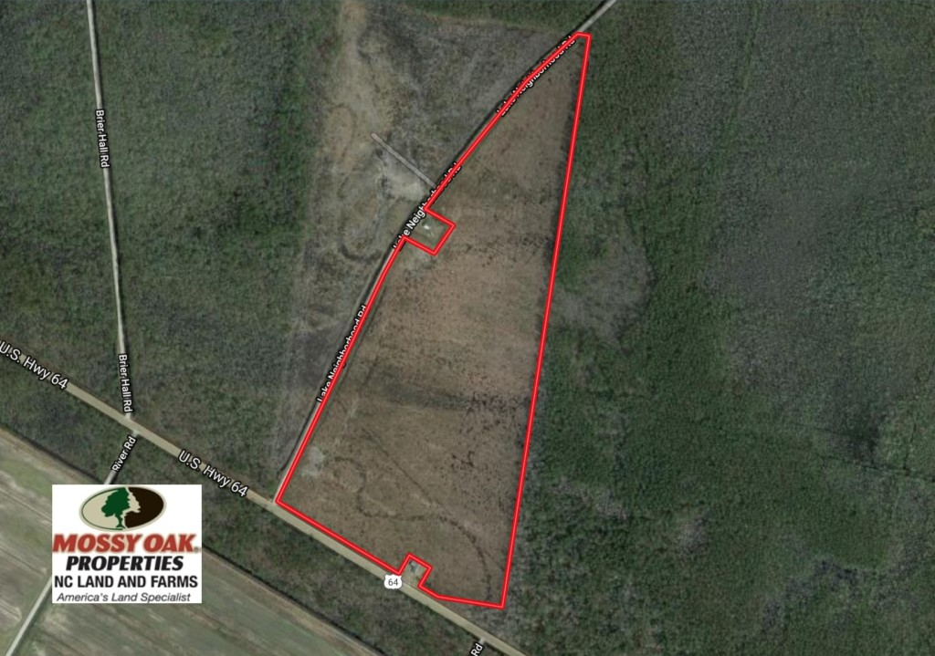 UNDER CONTRACT!   74.4 Acres of Hunting and Timber Land for Sale in Dare County NC!