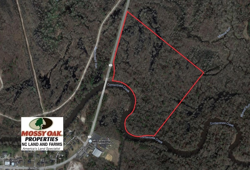43.66 Acres of Creekfront Hunting Land For Sale in Greene County NC!