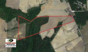 SOLD!  56.69 Acres of Farm and Timber Land For Sale in Wilson County NC!
