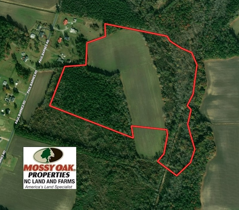 47 Acres of Farm and Timber Land For Sale in Columbus County NC!