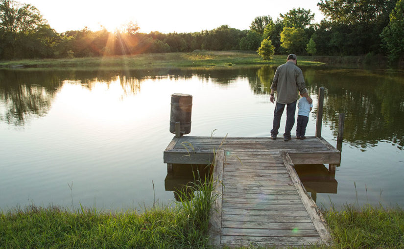 SPRING PHYSICAL | HOW IS YOUR POND'S HEALTH?