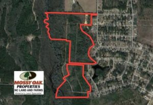 UNDER CONTRACT!!  77 Acres of Hunting Land For Sale in Scotland County NC!
