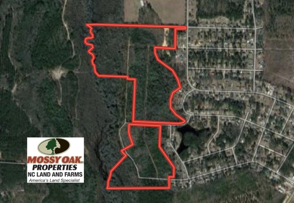 77 Acres of Hunting Land For Sale in Scotland County NC!