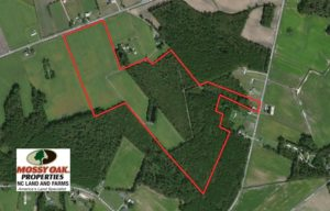 UNDER CONTRACT!  76 Acres of Farm and Timber Land For Sale in Robeson County NC!
