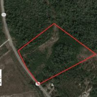 UNDER CONTRACT!  30 Acres of Hunting and Timber Land For Sale in Bladen County NC!