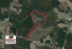 UNDER CONTRACT!!  111 Acres of Hunting and Timber Land For Sale in Craven County NC!