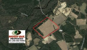 UNDER CONTRACT!  97.15 Acres of Farm and Hunting Land For Sale in Columbus County NC!