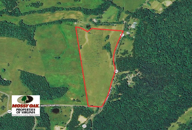 Sold 20 Acres Of Equestrian Farm And Residential Land For Sale In Rockbridge County Va Mossy Oak Properties Virginia