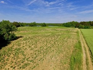 SOLD!! 31.36 Acres of Farm and Investment Land For Sale in Nash County NC!