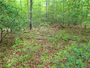 UNDER CONTRACT!  2 Acre Residential Lot For Sale in Spotsylvania County VA!