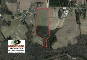 REDUCED!  30 Acres of Investment Farm and Timber Land For Sale in Beaufort County NC!