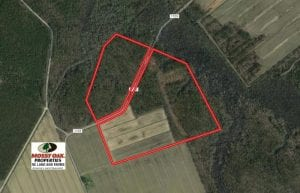 UNDER CONTRACT!  75 Acres of Farm and Hunting Land For Sale in Tyrrell County NC!