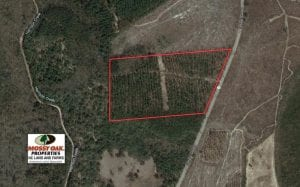 UNDER CONTRACT!  31 Acres of Hunting Land For Sale in Cumberland County NC!