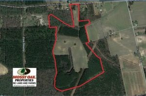 UNDER CONTRACT!  80 Acres of Farm and Timber Land for Sale in Pitt County NC!
