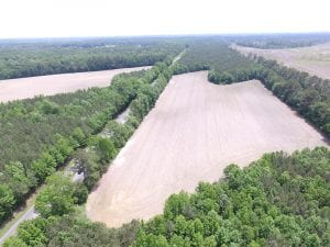 SOLD!!!  40 Acres of Farm and Hunting Land For Sale in Prince George County VA!