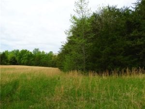 UNDER CONTRACT!  7 Acres of Residential and Hunting Land for Sale in Spotsylvania County VA!