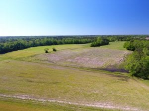 UNDER CONTRACT!  8 Acres of Pasture and Hunting Land with Home For Sale in Robeson County NC!