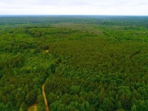 SOLD! 55 Acres of Residential and Recreational Property For Sale in Chatham County NC!