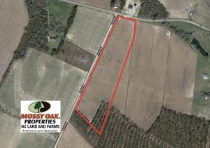 UNDER CONTRACT! 13 Acre Farm For Sale in Chowan County NC!