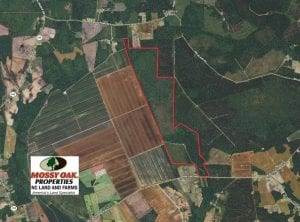 UNDER CONTRACT!!  460 Acres of Timber Land For Sale in Columbus County NC!