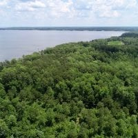81.5 Acres of Waterfront Property For Sale in Blount's Creek Beaufort County NC!