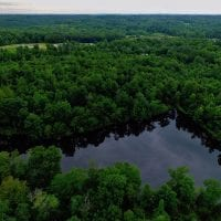 UNDER CONTRACT!  13.4 Acres of Hunting and Fishing Land For Sale in Caswell County NC!