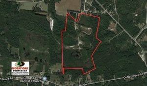UNDER CONTRACT!  103.88 Acres of Hunting and Timber Land For Sale in Brunswick County NC!