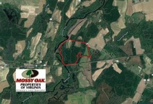 SOLD!  127 Acres of Farm and Hunting Land on the Blackwater River For Sale in Isle of Wight County Virginia!