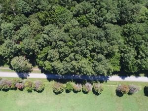 SOLD!!  3 Acres of Residential Land For Sale in Accomack County VA!