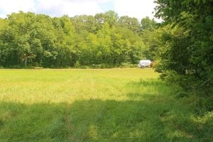UNDER CONTRACT!  6 Acres of Residential and Farm Land For Sale in Powhatan County VA!