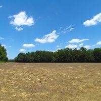 UNDER CONTRACT!  127 Acres of Farm and Hunting Land on the Blackwater River For Sale in Isle of Wight County Virginia!