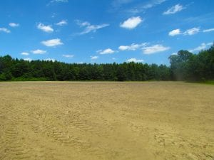 UNDER CONTRACT!  15 Acres of Farm and Hunting Land For Sale in Isle of Wight County Virginia!