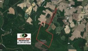 UNDER CONTRACT!  210 Acres of Farm and Timber Land For Sale in Johnston County NC!