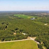 83+/- Acres of Timber and Hunting Land For Sale in Warren County NC!