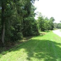 5 Acres of Residential and Hunting Land For Sale in Brunswick County NC!