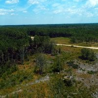 SOLD!! 7 Acres of Residential and Hunting Land For Sale in Brunswick County NC!