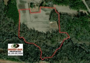 UNDER CONTRACT!  29 Acres of Hunting and Farm Land For Sale in Duplin County NC!
