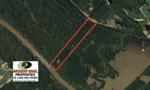 32.01 Acres of Hunting and Timber Land for Sale in Bladen County NC!
