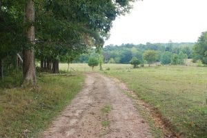 SOLD!!  8.64 Ac of Residential and Hunting Land For Sale in Cumberland Co VA!