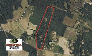 SOLD!39.4 Acres of Recreational Land For Sale in Lunenburg County VA!