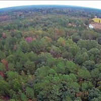 39.4 Acres of Recreational Land For Sale in Lunenburg County VA!