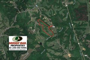SOLD!!  42 Acres of Pasture and Timber Land For Sale in Caswell County NC!