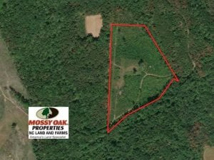 22 Acres of Secluded Hunting Land For Sale in Person County NC!