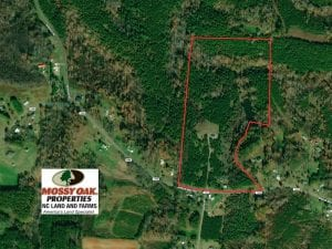 37 Acres Hilltop Retreat with Timber and a Pond For Sale in Stokes County NC!