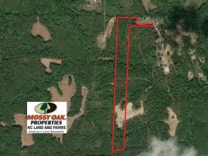 22 Acres of Hunting Land For Sale in Person County NC!