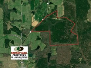 107 Acre Fox Pen and Investment Timber Land For Sale in Vance County NC!